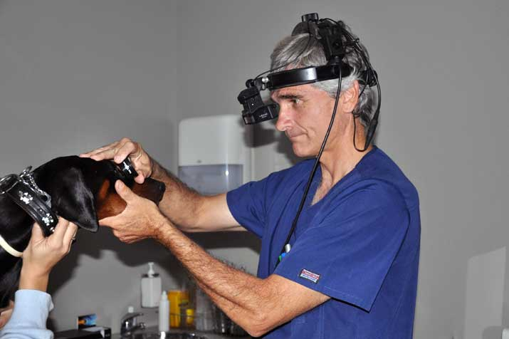 El diagnóstico temprano de cancer ocular puede salvar visión