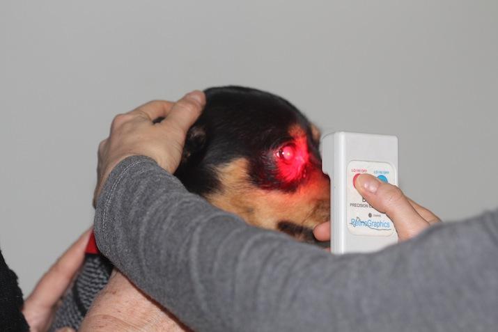 Test-luces-cromaticas