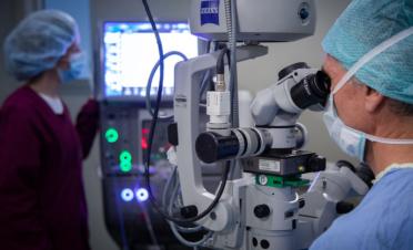 cirugía de catarata en perros con facoemulsificación del cristalino