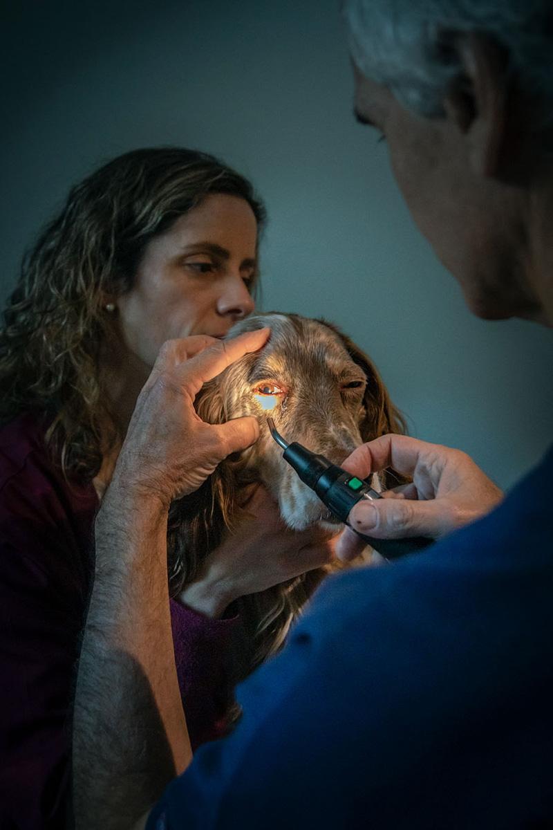 El Dr. Francisco J. Simó utilizando el transiluminador de Finnoff para la evaluación del reflejo de la pupila.