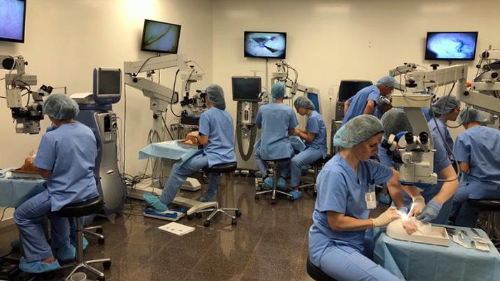 Curso práctico de iniciación a la microcirugía ocular