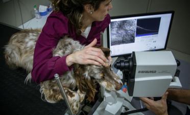 Tomografía de Coheréncia Óptica (OCT) de retina para realizar el examen de las diferentes capas que componen la retina y el nervio óptico