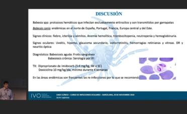 Curso Oftalmología veterinaria IVO - Infecciones oculares. Casos clínicos