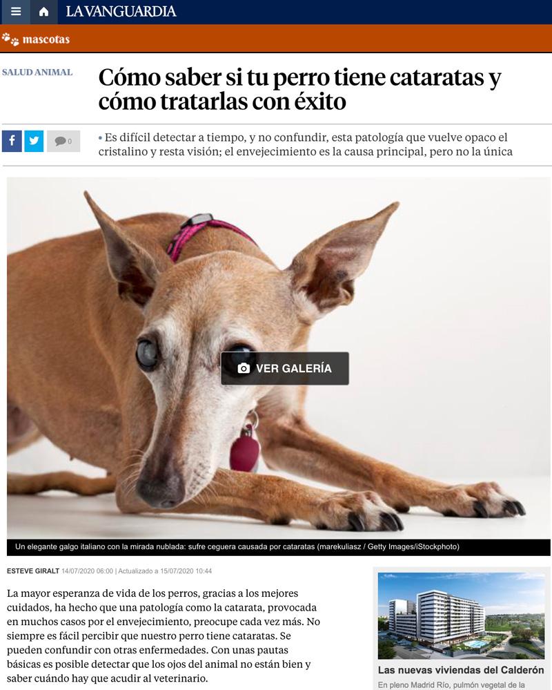 IVO en La Vanguardia